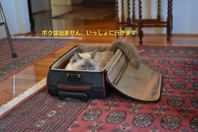 departure_1.jpg