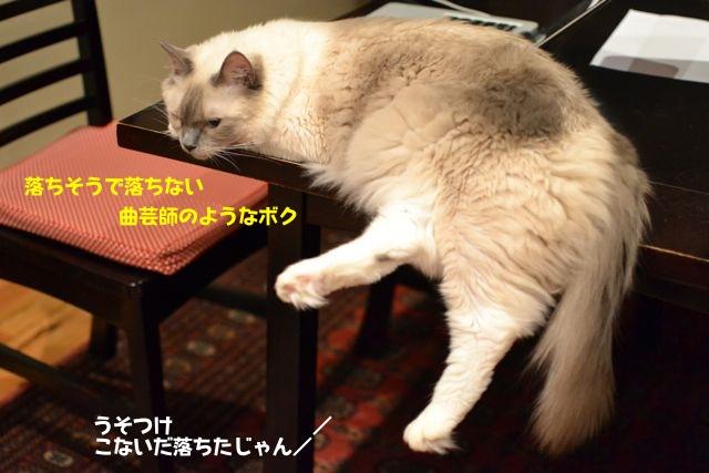sleep_1.jpg