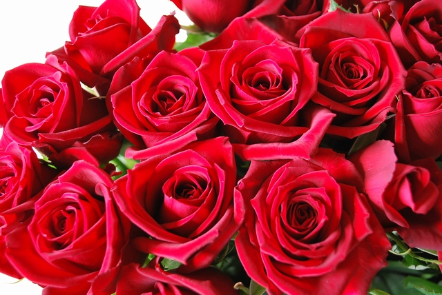 すべての講義 1ミリリットル グラム : 飲めば皮膚からバラの香り放出 ...