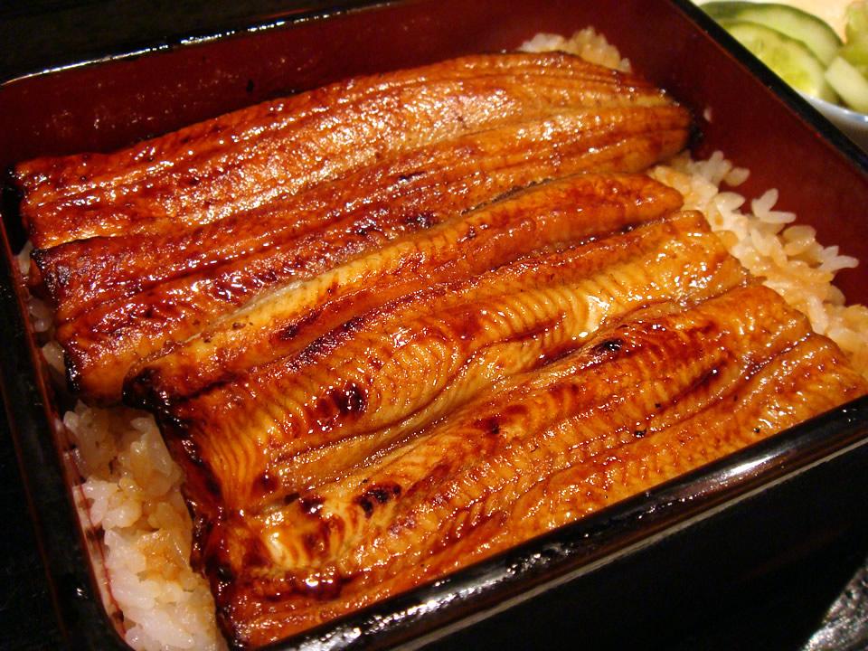 ウナギ高騰 神田の老舗の鰻屋が閉店…「お客さんが本当に来なくなってしまった」    外食ちゃんねる