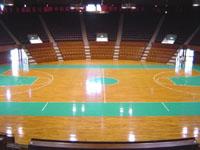 nitai_arena.jpg