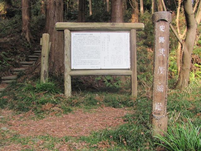 武茂本城5