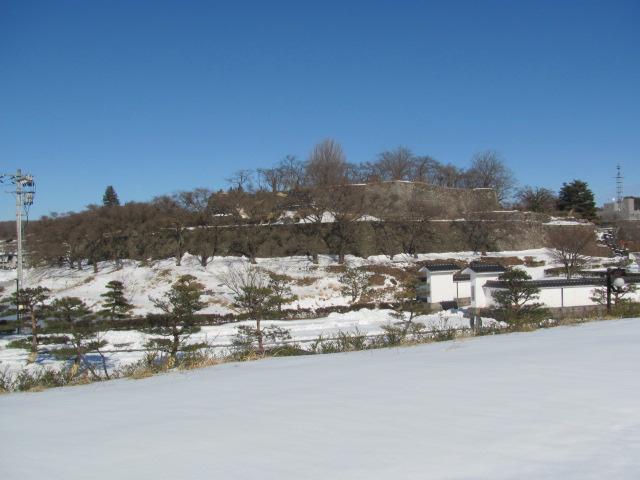 小峰城だるま市1
