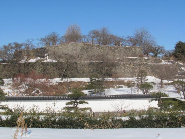 小峰城だるま市4