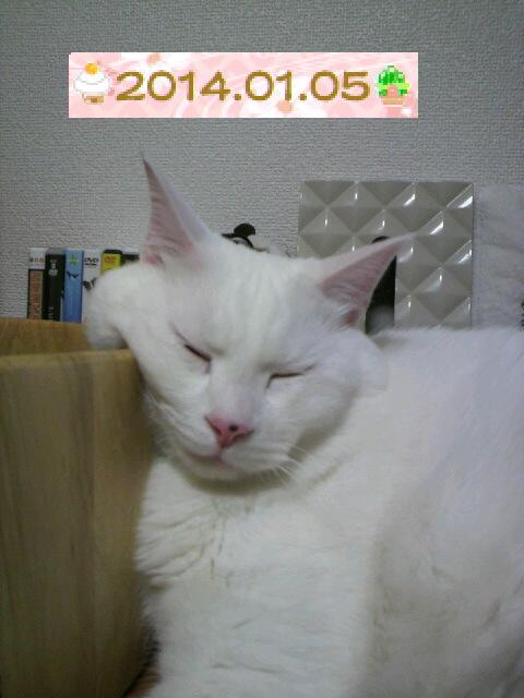 P1000674.jpg