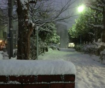 0208雪7