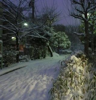 0208雪5