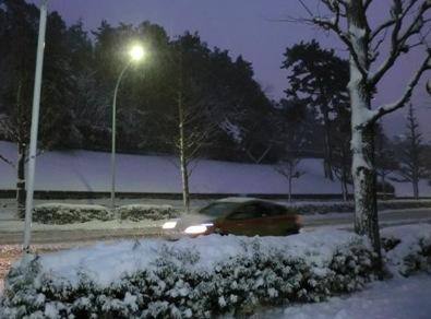 0208雪4