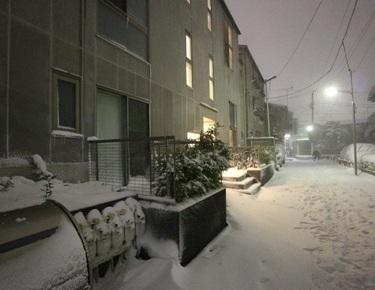 GCasa雪2