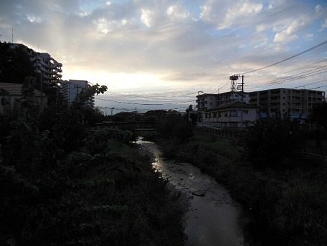 空堀川昨今2