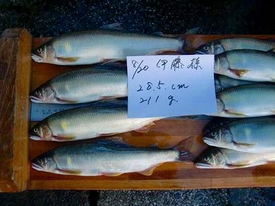 s-20120820_ryu_cyouka3.jpg