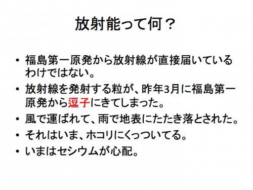 早川由紀夫fukushima120129zushi12