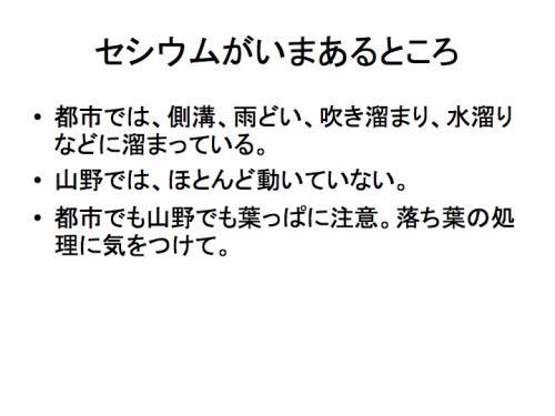 早川由紀夫fukushima120129zushi36