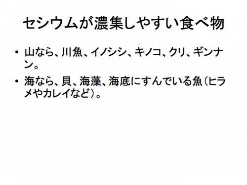 早川由紀夫fukushima120129zushi37