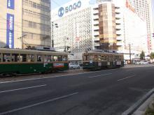 DSCN5577.jpg
