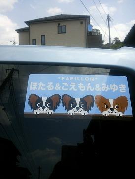 3ワンカラーシール