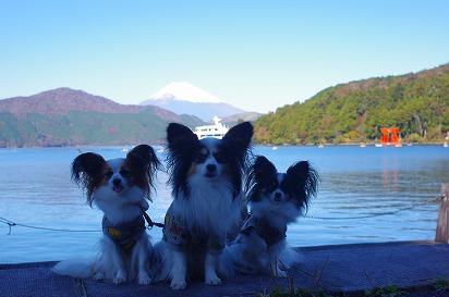 富士山と3ワン11.10