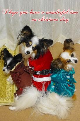 クリスマスメッセージ2012