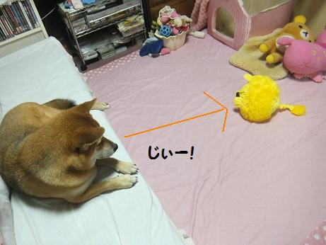 004c_20121016205831.jpg