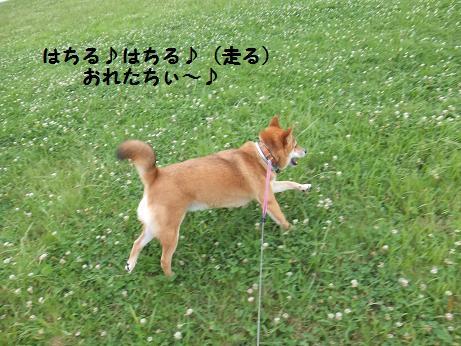 011c_20120625202725.jpg
