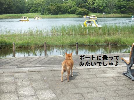 029c_20120630214707.jpg