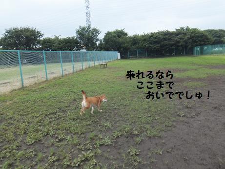 060c_20120625210035.jpg