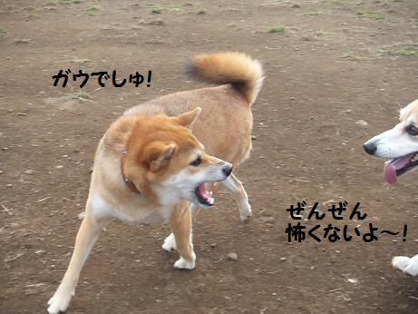 122c_20121027203957.jpg