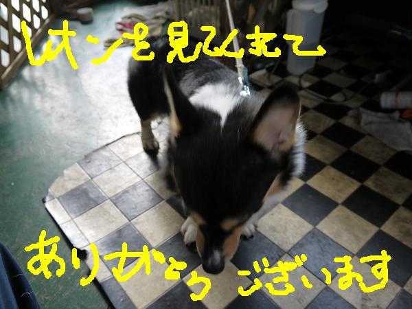 画像reon 022