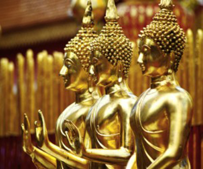 asian-gold-fever-.jpg