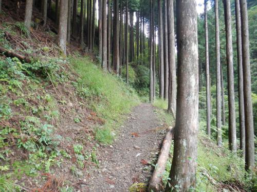 川苔山20121005 013