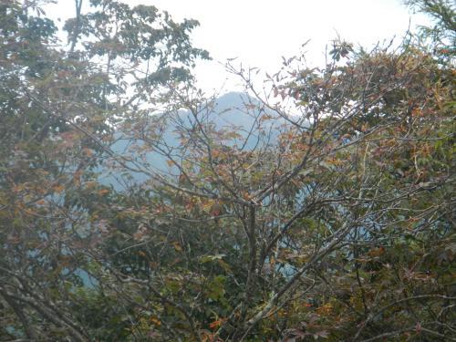 川苔山20121005 033