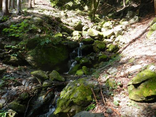 川苔山20121005 043