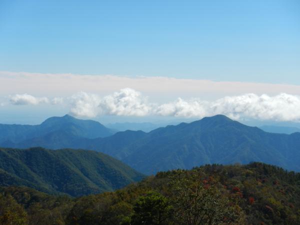 鷹ノ巣山② 023