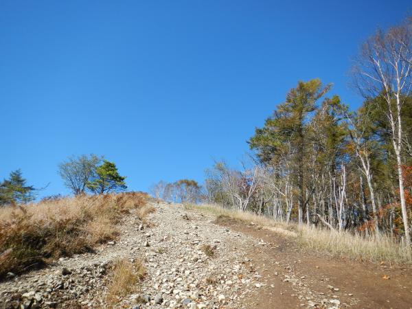 鷹ノ巣山② 032