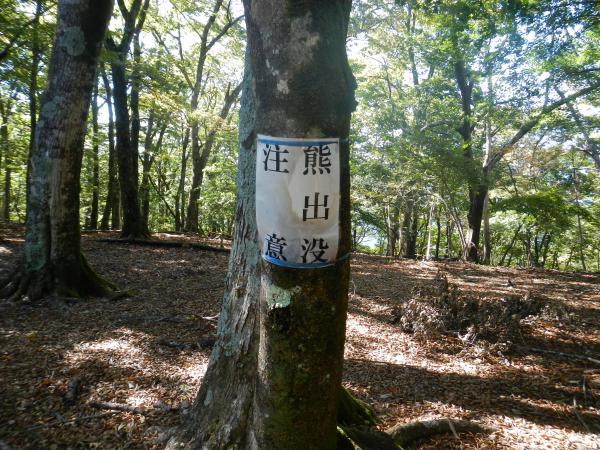 鷹ノ巣山② 041