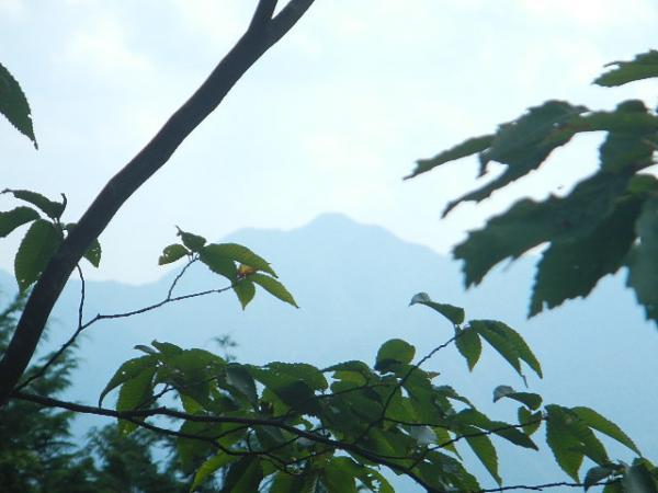 本仁田山2012.08.30 050