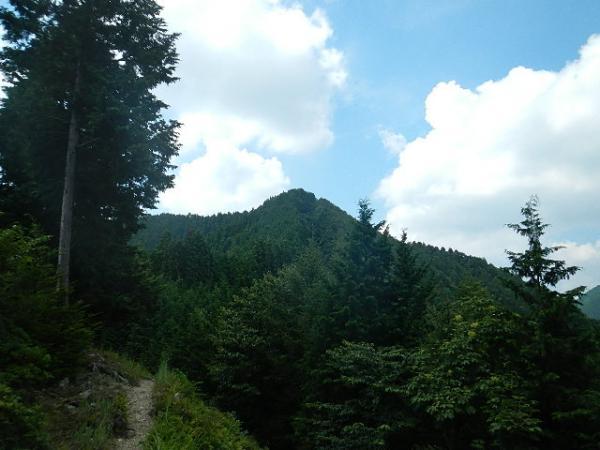 本仁田山2012.08.30 053