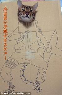 CardboardCat1210_07a.jpg