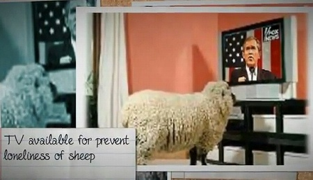 hotel_sheep1206_01.jpg
