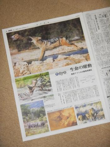毎日新聞夕刊記事