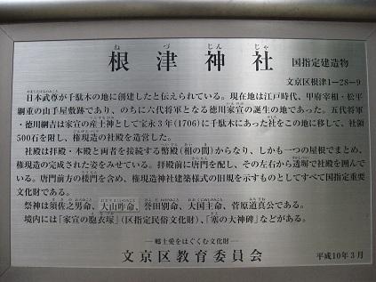131_3253.jpg