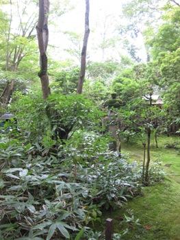 来迎院 含翠庭