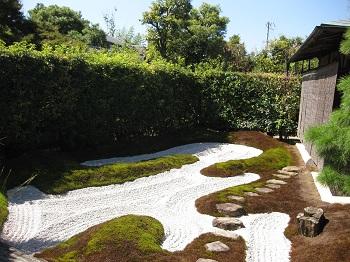大徳寺 瑞峯院 茶室前の庭