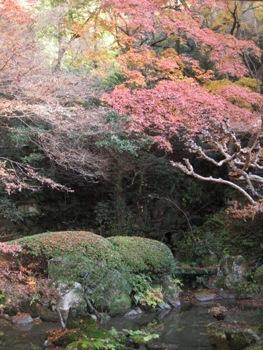 長楽寺 庭2