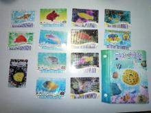 うおっち&ももの海水魚日記-カード