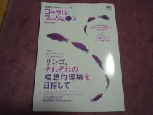 うおっち&ももの海水魚日記-コーラルフィッシュ19