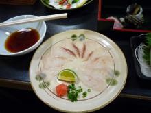 うおっち&ももの海水魚日記-夕食5