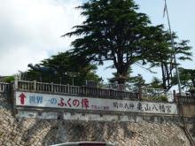うおっち&ももの海水魚日記-亀山八幡宮