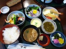 うおっち&ももの海水魚日記-萩の昼飯