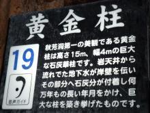 うおっち&ももの海水魚日記-秋芳洞4